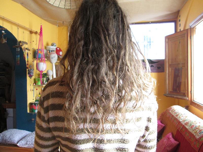 Growing natural dreadlocks 11 weeks later