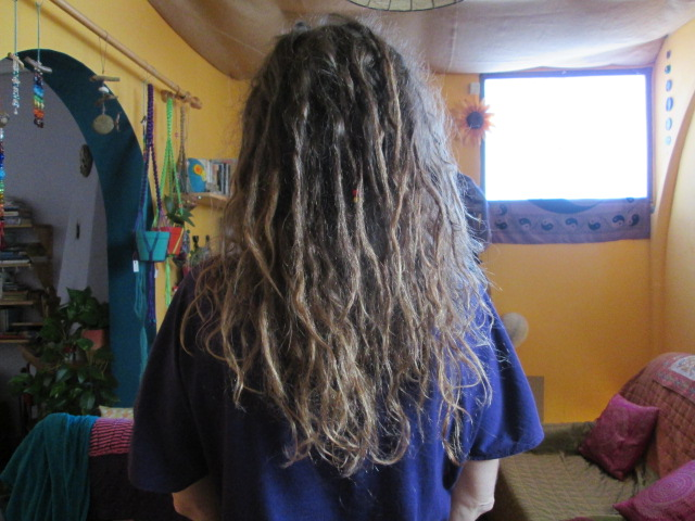 Growing dreadlocks naturally 26 weeks later